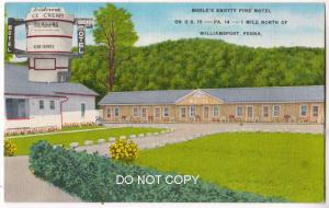 Bodle's Knotty Pine Motel, Williamsport PA