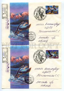 414545 RUSSIA 1993 year set of FDC Kozlov duck hunting registered real posted