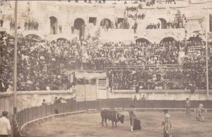 RP: Corrida de Toros, Toreadors in Bullfighting Area with Bull