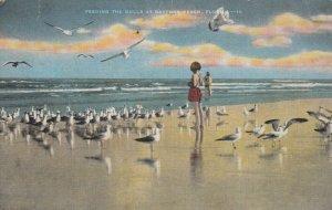 DAYTONA BEACH , Florida , 30-40s ; Feeding the Gulls