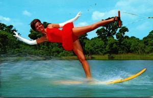 Florida Cyrpess Gardens Water Ski Show The Swan
