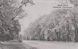 Connecticut  Litchfield North Street   Dexter Press