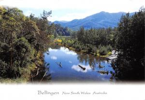 Australia Bellingen New South Wales River