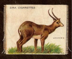 TURN OF CENTURY CIGARETTE SILK -  LECHWE - ZIRA