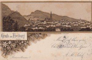 Gruss aus FREIBURG , Baden-Wurttemberg, Germany; 1891