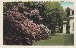 SAVANNAH , Georgia , 1910-20s; Azaleas & W.J. Derenee Library, Wormsloe Gardens