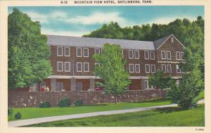 Tennessee Gatlinburg Mountain View Hotel