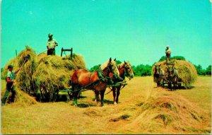 Empilement Foin Ouest Agriculture Scène Chevaux Carts Unp Lusterchrome Postale