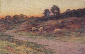 TUCK #2883; ENGLAND, 1900-1910´s; The Blush Of Eve, Sheeps Eating, Sunset Scene
