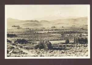 RPPC HOOD RIVER VALLEY OREGON MT. HOOD VINTAGE REAL PHOTO POSTCARD