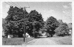 G22/ DeLancey New York RPPC Postcard c40s Homes Road Scene 3