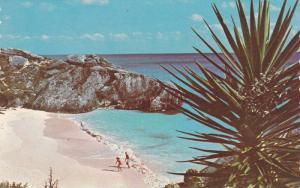 A secluded cove, South Shore,  Warwick,  Bermuda,  40-60s