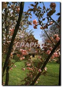Postcard Modern Landscape Normand