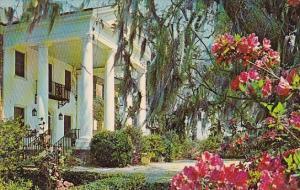 South Carolina Charleston Boone Hall Plantation 1971