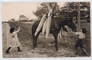 Extravaganza - Horse Loaded with Ears of Corn