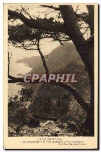 Old Postcard Ile de Port Cros Var His sentiore along ridges or wild nesting g...