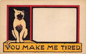 Cat Postcard Old Vintage Antique Cats, Kitten Post Card Unused