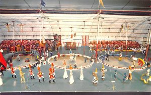 Under the Big Top The Early American Museum Circus Unused