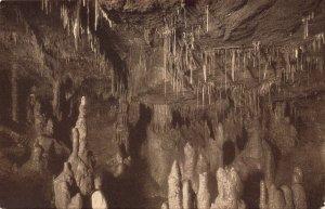 Spain Cuevas de Altamira Vista de la Segunda Cueva Caves Postcard