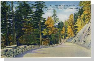 Smoky Mountains Nat'l Park,Postcard,NC/TN,Skyline Dr,Nr Mnt