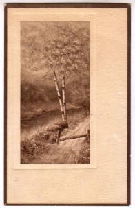 Scene, Tree
