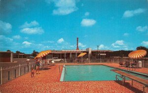 MERIDIAN, MS Mississippi NELVA COURTS & RESTAURANT Roadside POOL c1950s Postcard