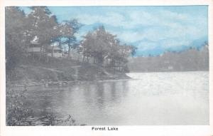 Forest Lake Indiana~House on Hill~1920s Auburn Greeting Card Co Postcard