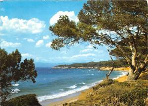 France Cote d'Azur Paysage typique de la Cote Landscape