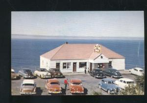 SEA LION CAVES OREGON 1950's CARS VINTAGE ADVERTISING POSTCARD CAVE