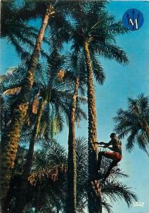 Senegal Cap Skiring