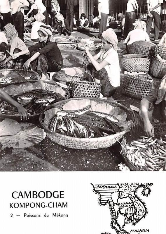 Kompong Cham Cambodia, Cambodge Poissons du Mekong Kompong Cham Poissons du M...