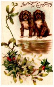 Dog , 2 puppies , misitole   , Merry Christmas