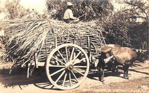 Philippines Carreta de Bueyes  Carreta de Bueyes