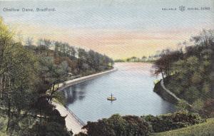 BRADFORD, Yorkshire, England, United Kingdom; Chellow Dene, 00-10s