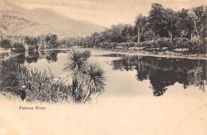 New Zealand Pelorus River