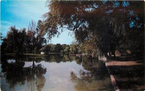 Schenectady New York~Central Park~Iroquois Lake~1950s Postcard