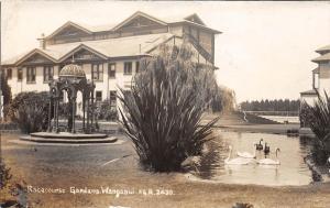 B86/ Wanganwi Foreign Postcard New Zealand Racecourse Gardens Swans