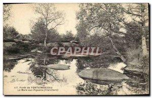 Old Postcard Forest of Fontainebleau La Mare aux Pigeons Franchard