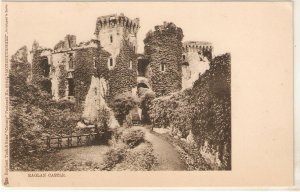 Raglan Castle Tuck Country Series PC # 2394