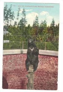 Bear Pit, Woodland Park , Seattle, Washington, 00-10s