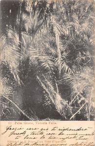 Zimbabwe Rhodesia, Victoria Falls, Palm Grove