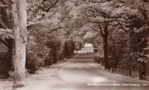 Bournemouth Road New Forest Antique Mint Real Photo Postcard