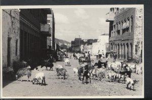 Yemen Postcard - Aden - Scene at Maalla   RS15742