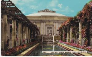 Post Card Somerset Weston-Super-Mare Winter Gardens - Lilypond