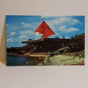 Vintage Postcard Cypress Gardens Florida stadium show water ski glider 1984