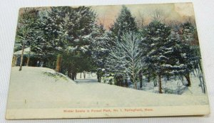 Vintage Postcard Winter Scene in Forest Park -No. 1- Springfield Mass. VERY RARE