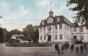 Germany Eisenach Hotel Restaurant Hohesonne sk3835