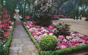 Alabama Mobile Flagstone Walk In Bellingrath Gardens 1959