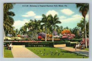 Miami FL-Florida,Scenic Tropical Landscaped Bayfront Park,Pigeons Linen Postcard