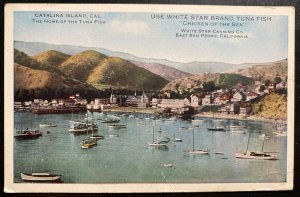Mint USA Advertising Postcard White Star Tuna Fish Chicken Of The Sea